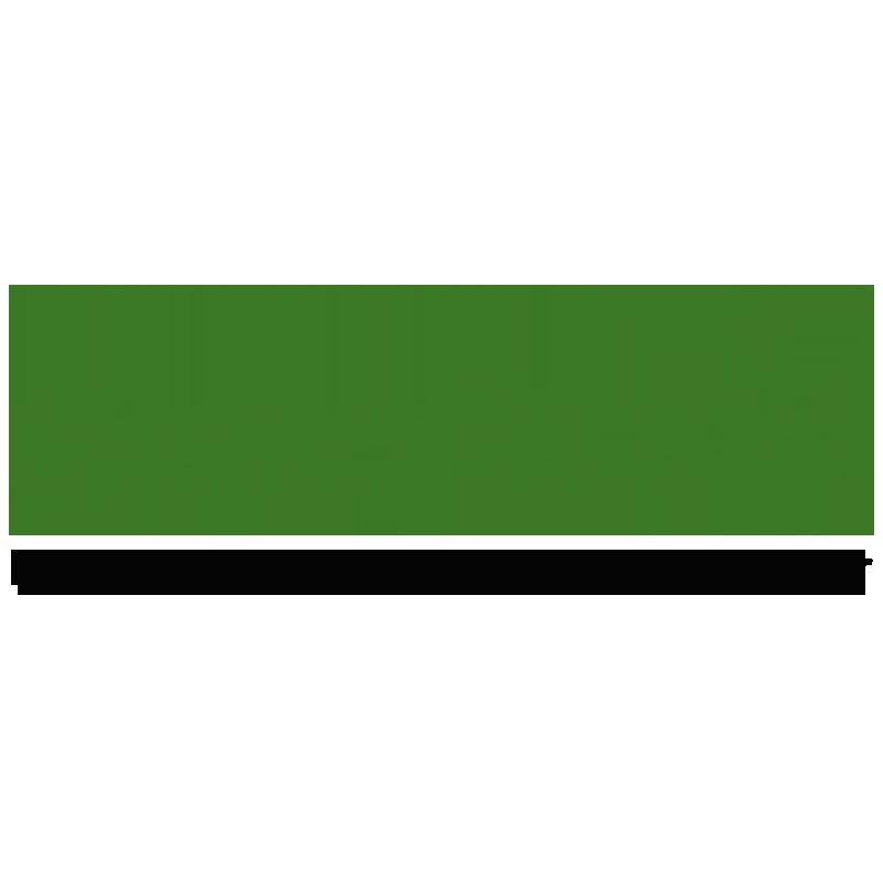 HYDROPHIL Zahnbürste Bambus grün mittelweich, 1 Stk.
